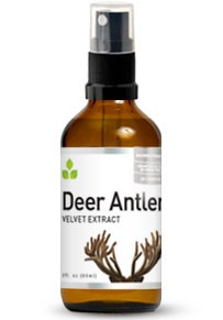 Buy Deer Antler Velvet Extract
