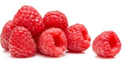 Pure Raspberry Ketone